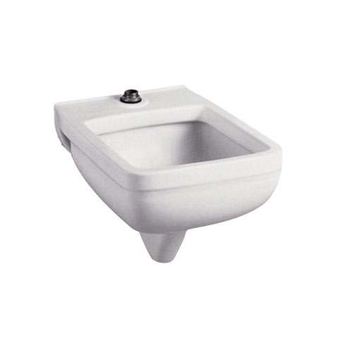 American Standard Clinic Service 25.25 inch x 21.125 inch Vitreous China Wall-Mounted Service Sink in White 541220